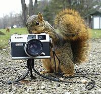 выбрать фотоаппарат